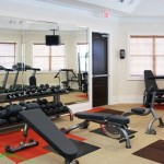 Delayne At Twin Creeks Apartment Fitness Center