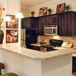 Delayne At Twin Creeks Apartment Kitchen