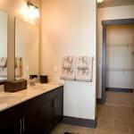 Lofts At Watters Creek I & II Apartment Bathroom