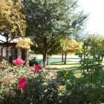 Settlers Gate Apartment Garden