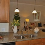 The Aspens at Twin Creeks Apartment Kitchen
